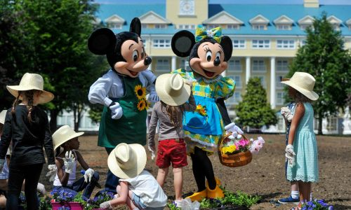 Disneyland Parijs krijgt een gigantische Nederlandse tuin