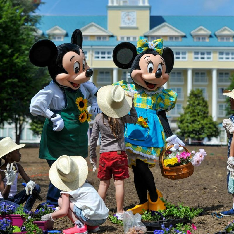 Disneyland Parijs Nederlandse tuin