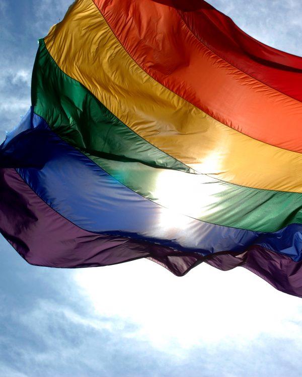 homoseksualiteit
