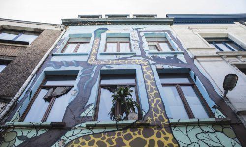 Hoe street art de normaalste zaak werd in de stad Antwerpen