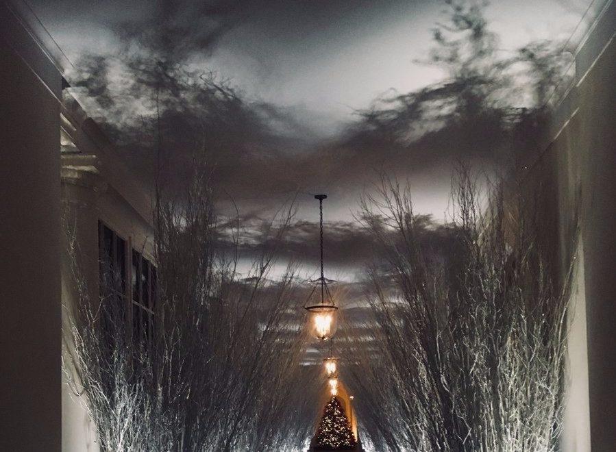 Witte Kerst Huis : Trump s kerstversiering bij het witte huis lijkt ontsnapt uit een