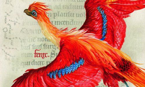 Duik nog dieper de Harry Potter-wereld in met twee nieuwe boeken over de geschiedenis van magie