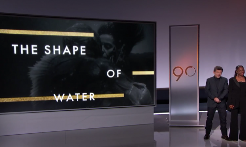'The Shape of Water' koploper van Oscars met 13 nominaties