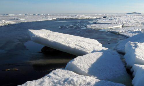 Oppervlakte noordpoolijs bereikt recordminimum voor januari