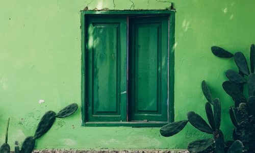 5 gemakkelijke tips om je dagelijks leven wat groener te maken