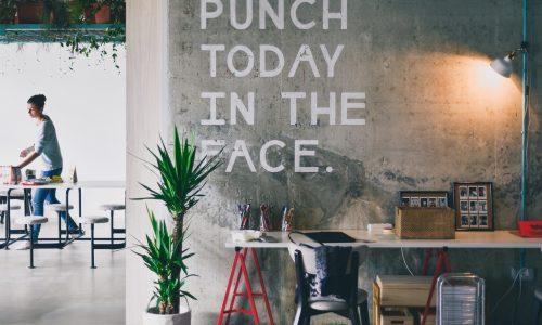Flexibel en afwisselend: Waarom steeds meer jongeren freelancen