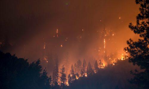 Gewonden en doden door enorme bosbranden in Griekenland