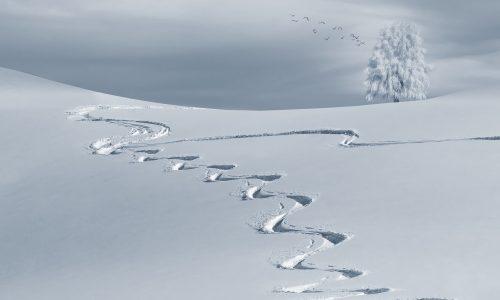 Is sneeuwteelt de oplossing voor lege pistes bij stijgende temperaturen?