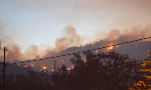 Bosbranden in Californië zijn de dodelijkste ooit in de staat