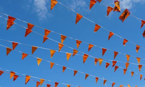 Dit moet je weten over de Oranje Leeuwinnen tijdens het WK
