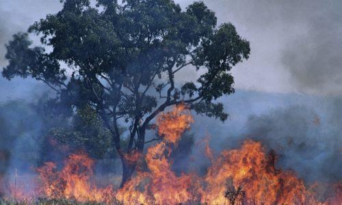 Bosbranden in Australië genereren zelf gevaarlijke weersomstandigheden