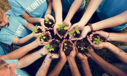 Maakt vrijwilligerswerk gelukkig? Nieuwe cijfers suggereren van wel