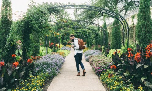 Mensen willen hun huis gezellig maken: tuincentra hebben het loeidruk