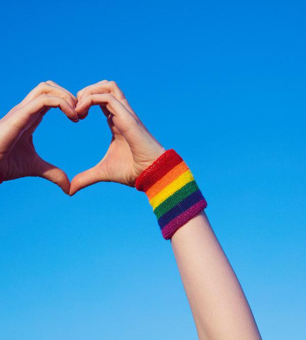 Homoseksualiteit, LGBTQ